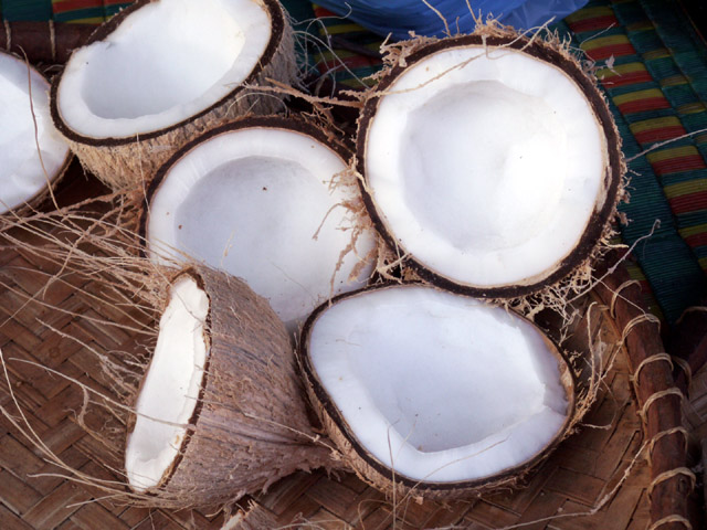 coconutmeat.jpg