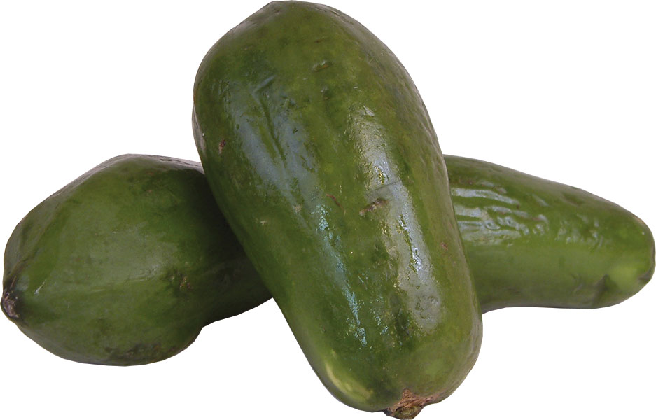 papaya-green.jpg
